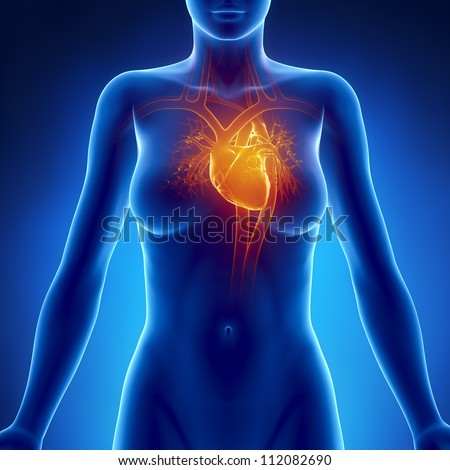 Woman glowing heart anatomy     **** Also as footage available in my portfolio