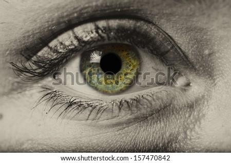 woman green eye isolated macro