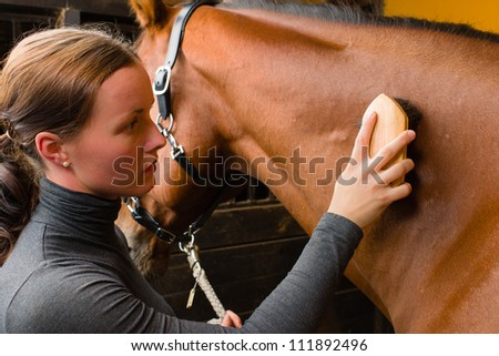 Woman grooming  horse in the stall, horizon format
