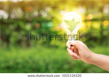 Woman hand hold the light bulb with bright and a sapling tree with growing inside  in the public park, Idea nature conservation and saving energy concept.