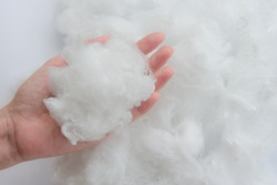 Woman hand holding Polyester stable fiber