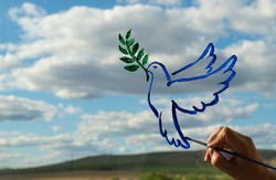 woman hand makes a drawing on the glass. dove is a symbol of peace. pigeon with olive branch