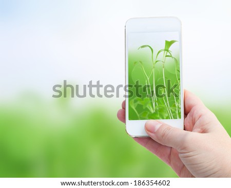 Woman hand taking picture with  smart phone against spring green background