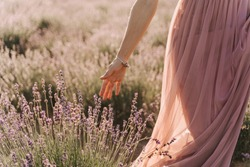 Woman Hand Touching Lavender Bushes on Sunny Day. Partial View of Young Girl Walking on Blooming Aromatic Field. Lady in Light Dress Picking Flower Selective Focus. Fragrant Bouquet. Feel Freedom