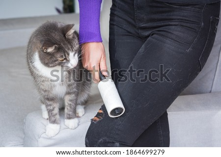 Photo of  Woman hand with clothes roller, lint roller or sticky roller removing animal hairs and fluff from from clothes. Cats hair on clothes