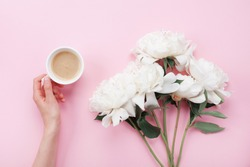 Woman hand with cup of coffee and beautiful white peony flowers on pink pastel table top view. Cozy breakfast in flat lay style.