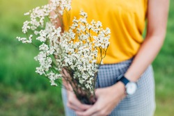 Woman hands holding a flower in green meadow, with focus on a flower