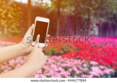 Woman Hands Holding And Using Smart Phone With Blurred Colorful - Colorful flower garden background