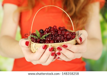Woman hands holding basket of ripe red cranberries, close up