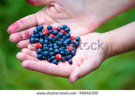 Woman hands holding ripe berries