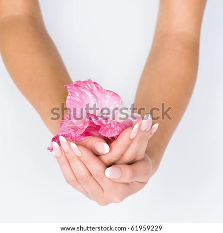 stockphoto:Womanhandswithfrenchmanicureholdingpinkflowerclose-up