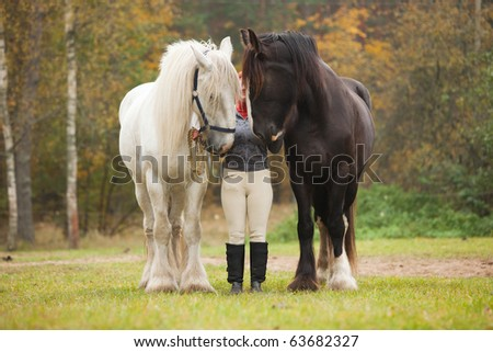 Woman having fun with two shire horses