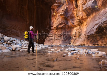 Woman Hiker Enjoying Spectacular Canyon View  (The Narrows in Zion National Park, Utah)