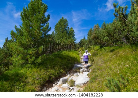 Woman - hiker walking on mountain trail on a bright summer day. Climbing Mount Krivan - major symbol in Slovak ethnic and national activism. Slovakia. Concept of hiking, active lifestyle, travel.