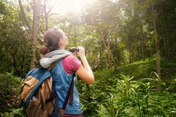 Woman hiker watching through binoculars wild birds in the rainforest. Bird watching tours. Ecotourism concept image travel.