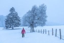 woman hiking in a winterlandscape on a foggy day with lite snowfall in the Allgau Alps, landscape photografie