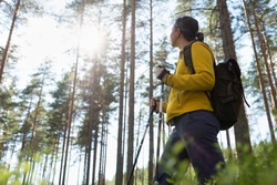 Woman hiking in forest, adventure and exercising. Legs and nordic walking poles in summer nature.
