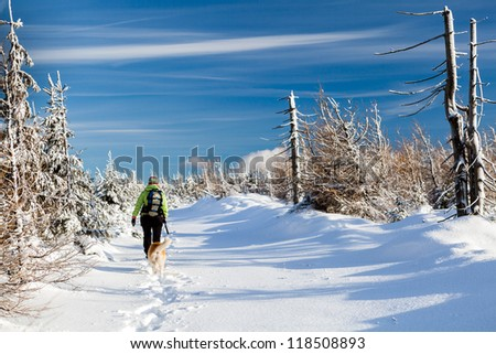 Woman hiking in winter mountains with akita dog. Sunny day recreation walking and trekking on white powder snow under the blue sky, Poland