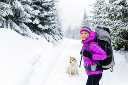 Woman hiking trekking in winter woods with akita dog. Recreation fitness and healthy lifestyle outdoors in beautiful snowy nature. Motivation and inspirational white winter landscape.