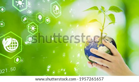 Woman holding a plant pot like planet earth. Environment protection concept. Sustainable development goals. SDGs.