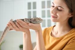 Woman holding bearded lizard indoors, closeup. Exotic pet