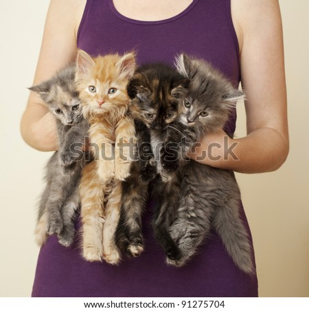 Woman Holding Four Kittens