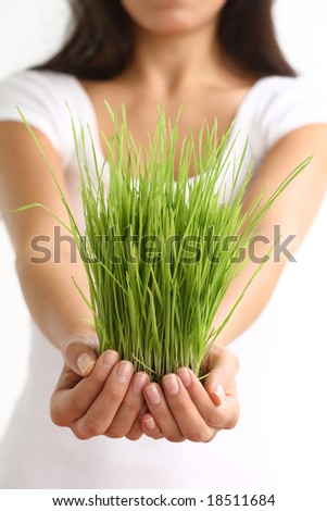 Woman holding wheatgrass in hands