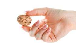 Woman holding whole walnut in her fingers. Walnuts isolated. Nut  on white background in hand.