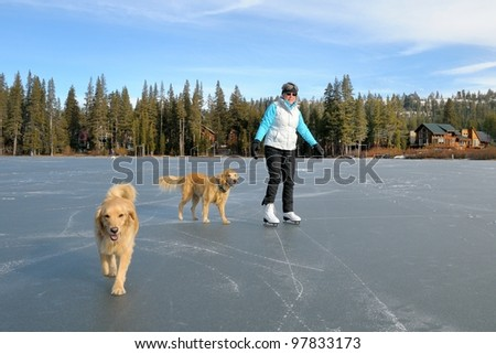 Woman ice skating on lake with her Golden Retrievers