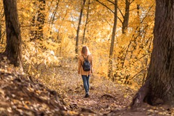 Woman in autumn park, back view. Adult girl walking away alone on path in autumn forest. Lonely young female person with backpack in autumn jacket. Beautiful fall nature. Autumn season concept.