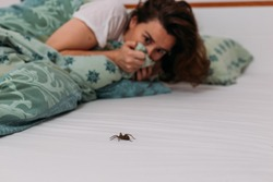 Woman in bedroom terrified by big spider crawling over her bed