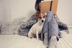 Woman in cozy home clothes relaxing at home with dog Jack Russel Terrier, drinking cacao, reading a book. Comfy lifestyle.