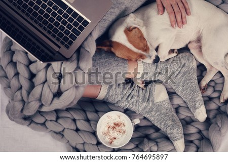 Woman in cozy home clothes relaxing at home with sleeping dog Jack Russel Terrier, drinking cacao, using laptop, top view. Comfy lifestyle.