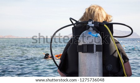 Woman in diving suit with aqualung ready to dive into sea, rear view. #1275736048