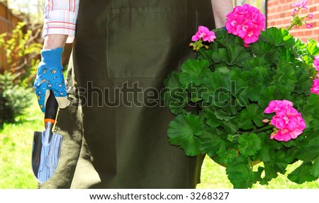 Woman in gardening apron carrying pot with geraniums