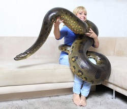 woman in her living room with a giant anaconda
