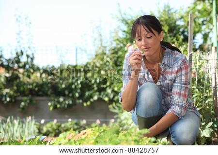 Woman in herb garden