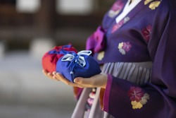 Woman in Korean traditional clothes  holding traditional packages