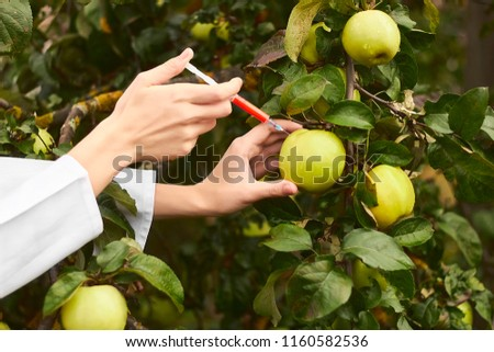 Woman in lab coat injects green apple on tree with red poison. GMO concept. #1160582536
