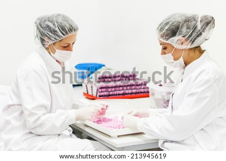 Woman in protective work wear controlling  a quality of a pills, pharmaceutical factory.Focus on the right woman, shallow doff