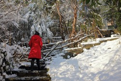 woman in red coat on the stairs, snowy winter day