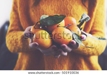 Woman in yellow knitted pullover with ripe clementines in her hands #501910036