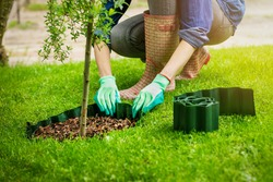 woman install plastic lawn edging around the tree in garden