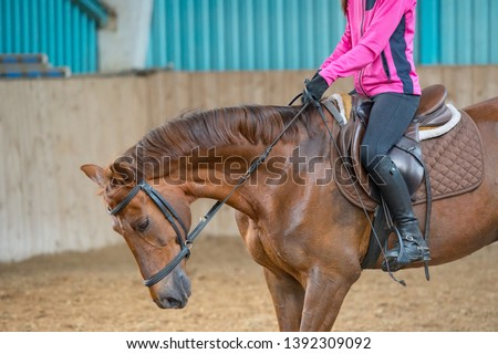 woman jockey riding a horse in manege