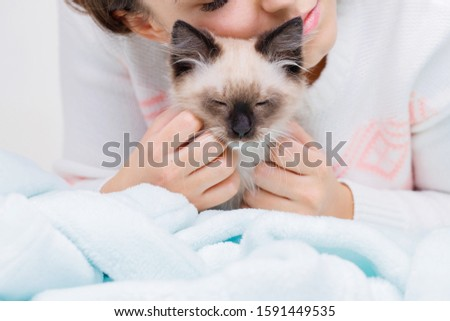 Woman kissing and hugs her cute fluffy cat at home. Concept of pets, friendship, trust, love and lifestyle. Friend of human. Animal lover.