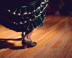 Woman legs in flamenco skirt and shoes