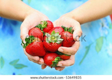 Woman offers freshly picked strawberries. Shallow DOF with selective focus on strawberries.