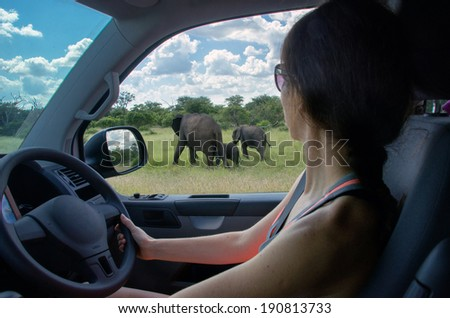 Woman on safari car vacation in South Africa, looking at elephant