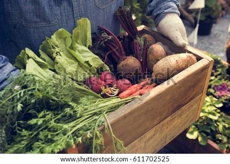 Woman owner fresh gracery organic shop