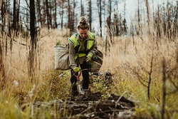 Woman planting trees in forest using shovel. Female forester planting seedlings in deforested area.